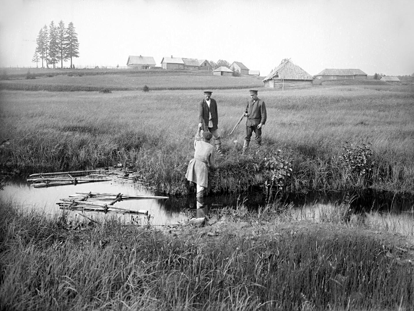 17Вид реки Волги на четвертой версте, вид прудов. 1903 г. Тверская губерния.